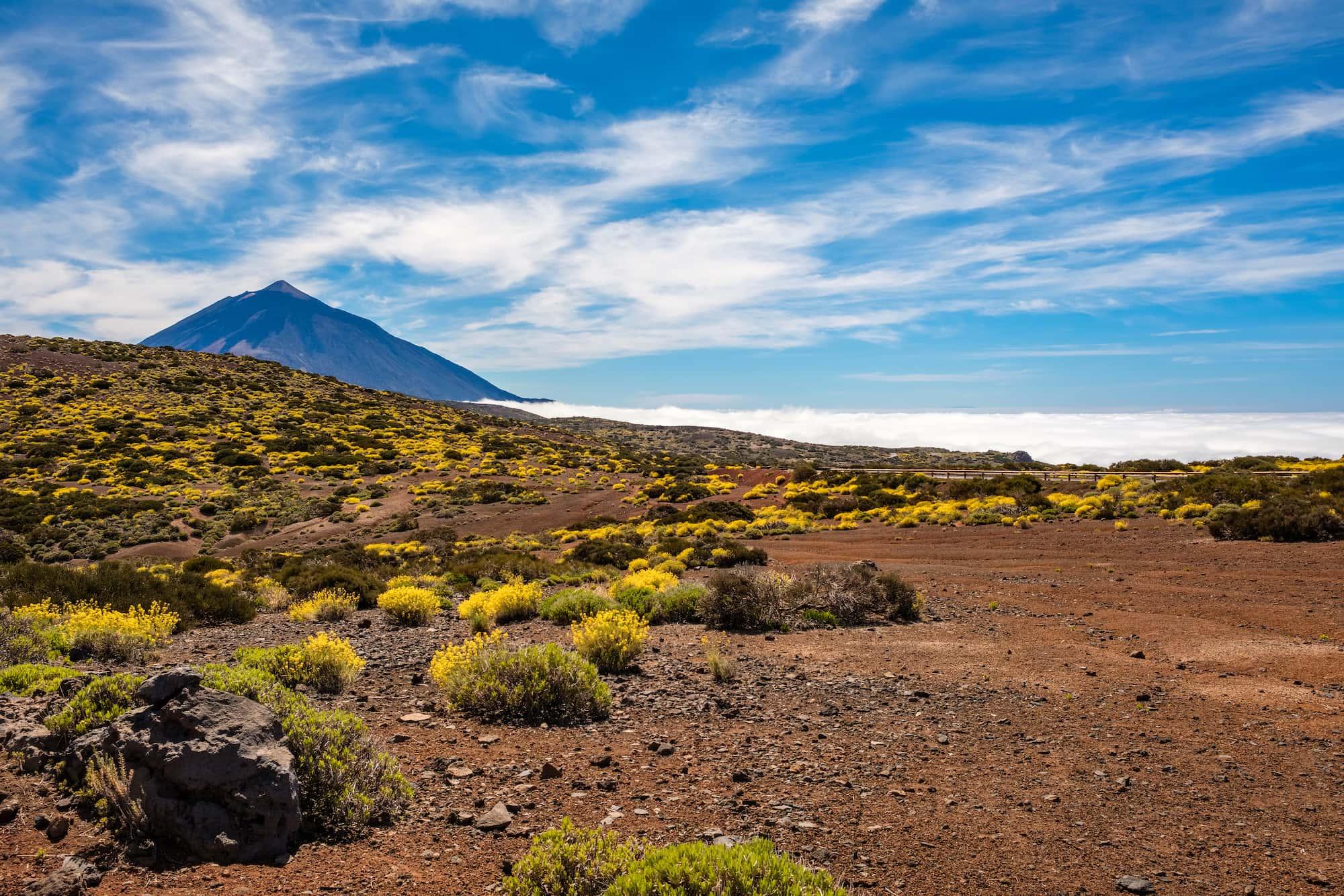 Naturaleza Tenerife