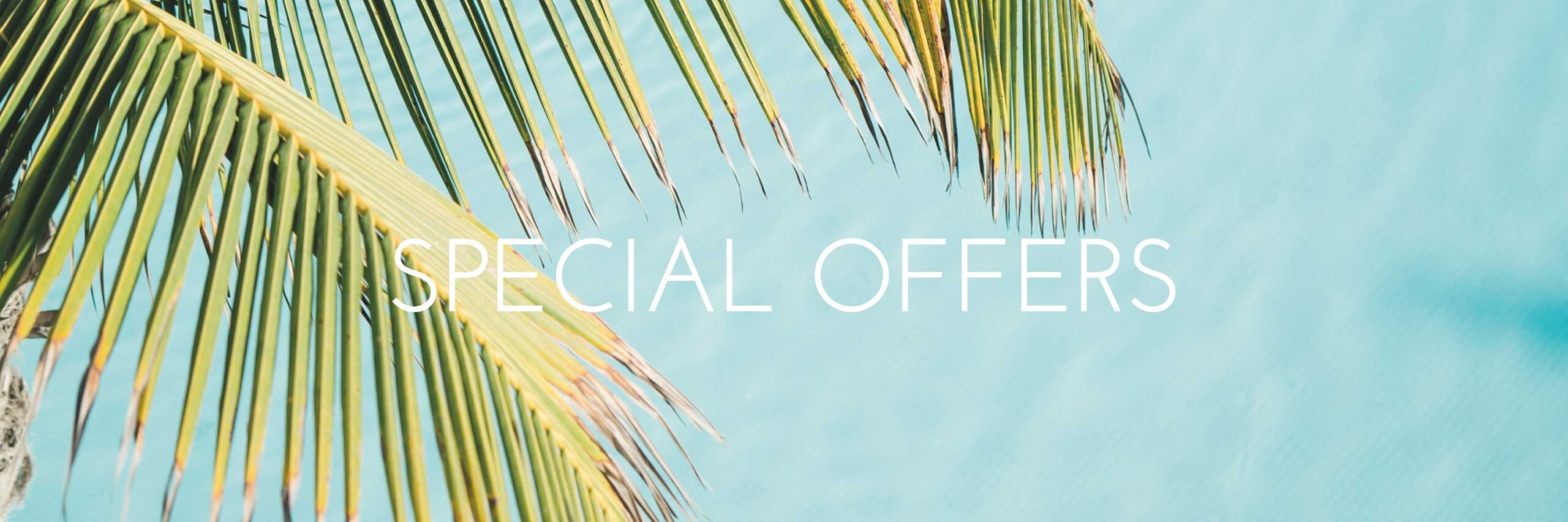 special-offers-web-copia